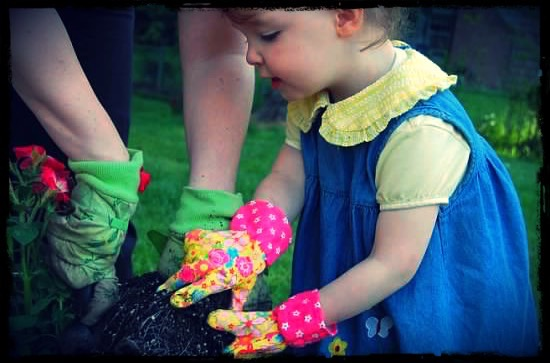 Our daughter, gardening, several years ago now.